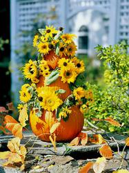 pumpkin-as-vase-creative-ideas17