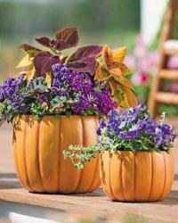 pumpkin-as-vase-creative-ideas19