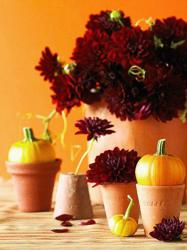 pumpkin-as-vase-creative-ideas21