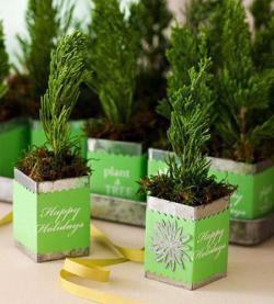 tiny-coniferous-winter-decor1-9