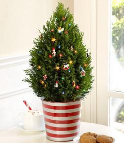 tiny-coniferous-winter-decor4-3