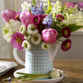 bellis-perennis-spring-decorating11