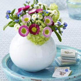bellis-perennis-spring-decorating8