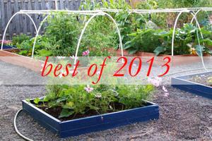 best5-vegetable-garden-ideas