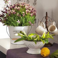 spanish-house-full-of-flowers-and-light11