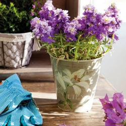 spanish-house-full-of-flowers-and-light6