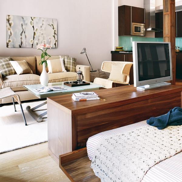 practical-ideas-in-two-small-apartments