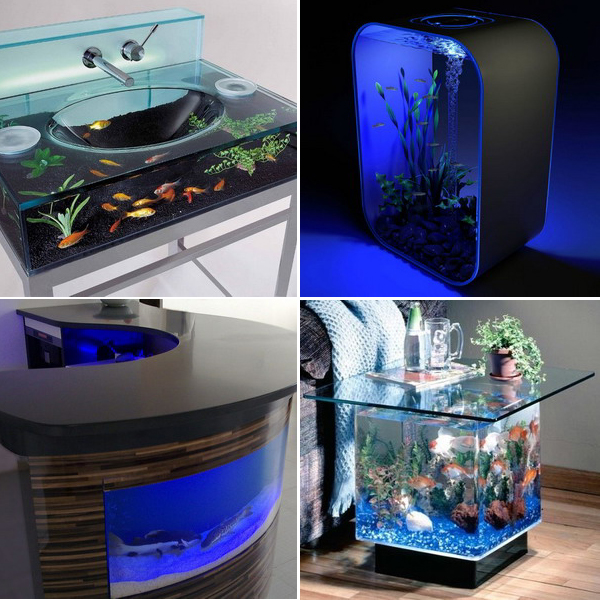 unusual-fish-tanks-ideas