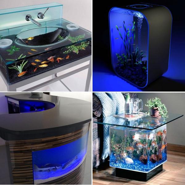 unusual-fish-tanks-ideas