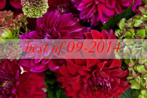 best7-dahlias-bouquets-in-different-shades