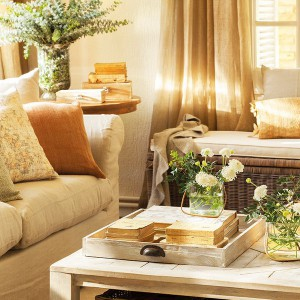fast-makeup-and-well-ordered-in-family-livingroom2