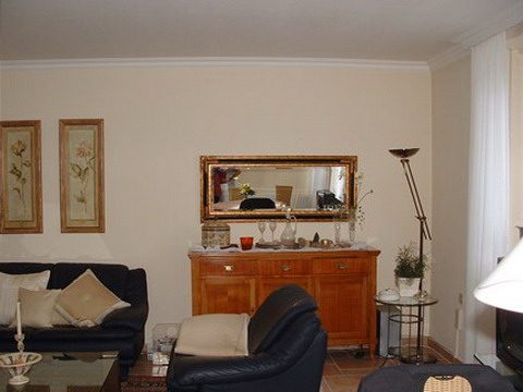 contemporary-country-style-updated-livingroom-before