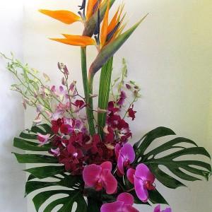 splash-of-exotic-colors-for-bathroom-mix2-1