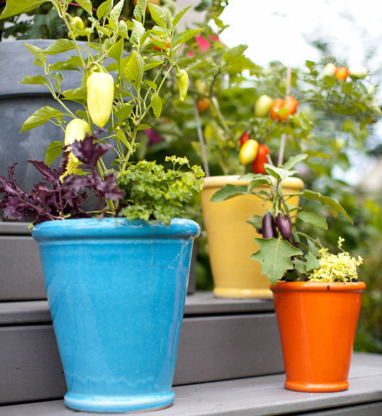 design-ideas-to-grow-veggies-in-containers1