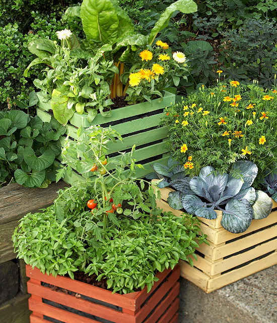design-ideas-to-grow-veggies-in-containers17
