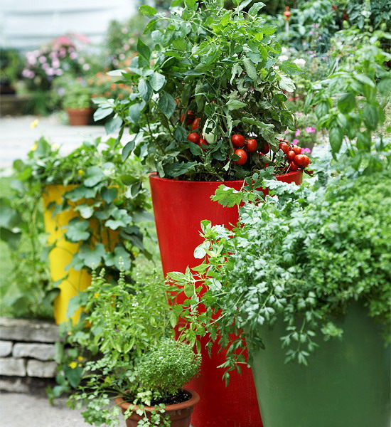 design-ideas-to-grow-veggies-in-containers2