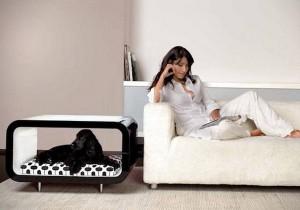 simple-diy-ideas-small-doggie-beds9
