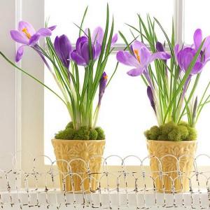 spring-flowers-creative-vases5-1-1