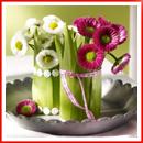 wp-content/uploads/2015/03/spring-flowers-decoration001.jpg