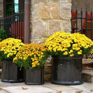 creative-use-large-pots-and-containers-in-garden21-2