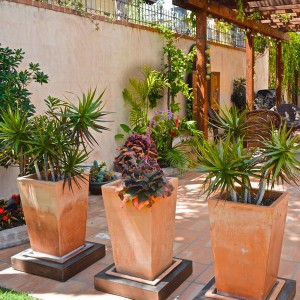 creative-use-large-pots-and-containers-in-garden24-1