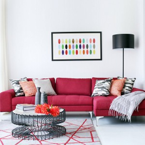 how-to-choose-accent-cushion-overview4-1