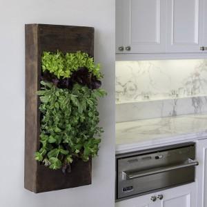 garden-inspired-look-in-home18-1