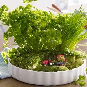 veggies-and-herbs-creative-tablescape-ideas9-2