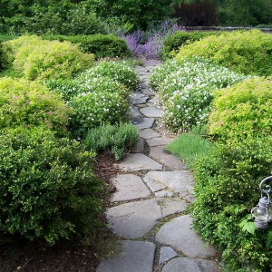 garden-path-good-looking-ideas1-1