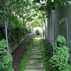 garden-path-good-looking-ideas22-1