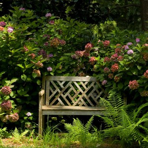 landscape-design-for-romantics11-2