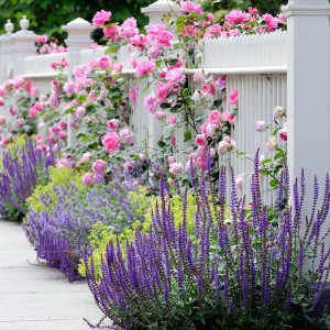 landscape-design-for-romantics6-1