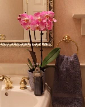 upgrade-bathroom-in-weekend-17-easy-tricks10-2