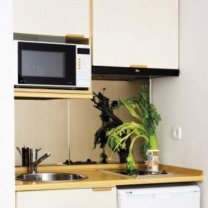 tiny-narrow-studio-apartment-30-sqm6