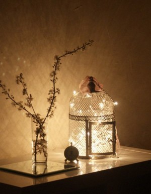 light-strings-deco-ideas16-2