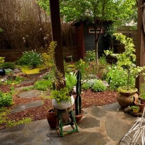 how-to-create-no-fuss-garden3-2