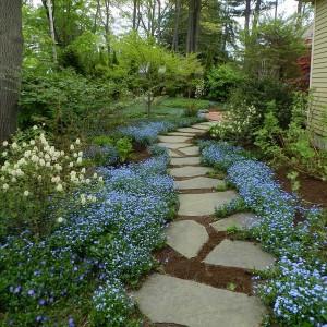 how-to-create-no-fuss-garden4-1