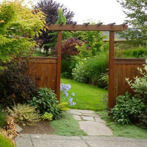 how-to-create-no-fuss-garden5-3