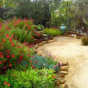 how-to-create-no-fuss-garden6-2