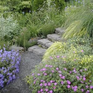 how-to-create-no-fuss-garden8-4