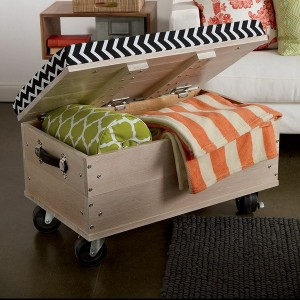 12-secret-places-for-secondary-storage-in-livingroom5-2