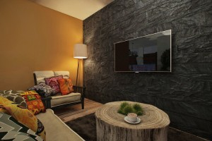apartment-projects-n155-6liv