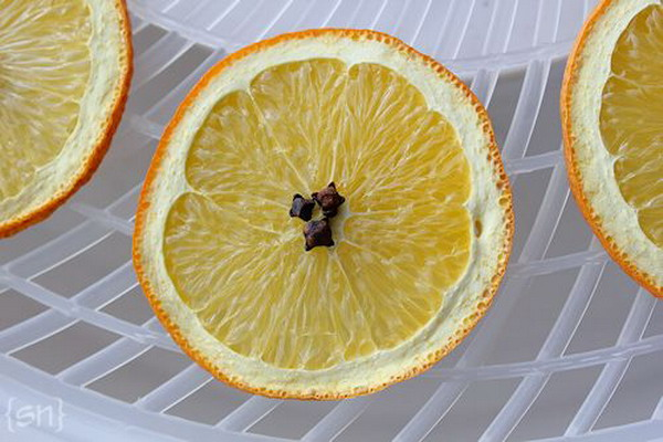 citrus-slices-new-year-deco1-2