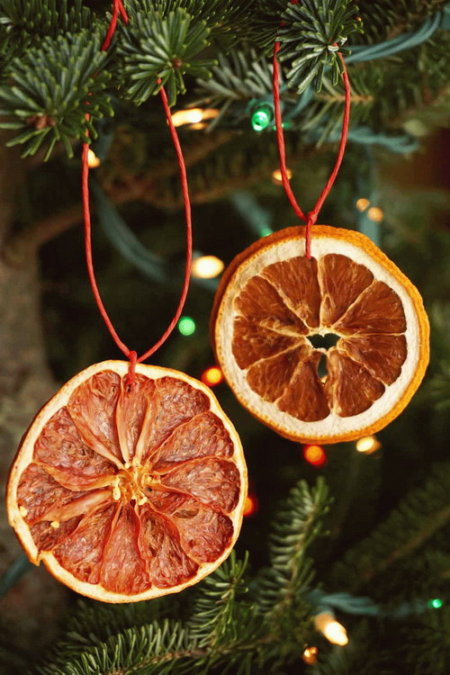 citrus-slices-new-year-deco2a