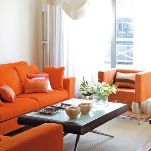 ergonomic-rules-in-small-apartment-1-livingroom4