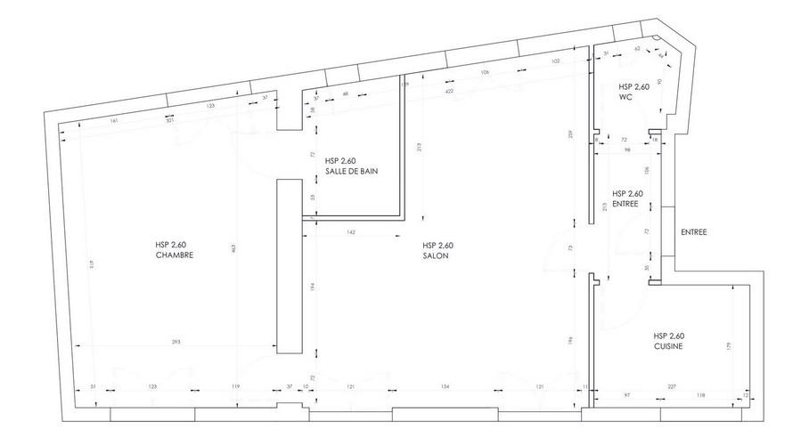 small-parisian-apartment-38sqm-plan-before