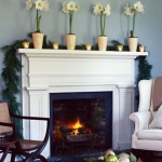 amaryllis-centerpiece-ideas1-1.jpg