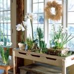 amaryllis-centerpiece-ideas1-3.jpg