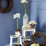 amaryllis-centerpiece-ideas2-11.jpg