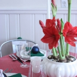 amaryllis-centerpiece-ideas2-4.jpg